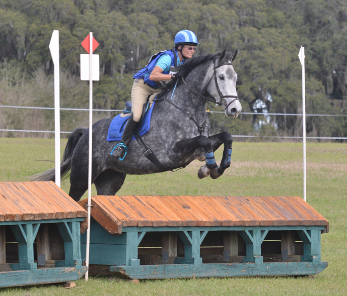 Ocala Horse Roxy for Sale